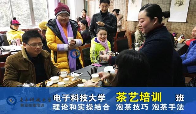 茶艺培训考证