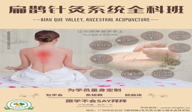 广州针灸技术提升教学临床应用
