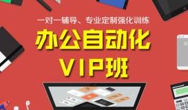 VIP定制 (1-3人班)