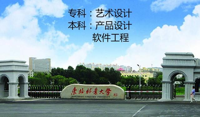 中育為-[學歷教育]北京助學自考大專東北林業大學藝術設計專業課程